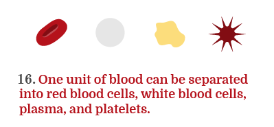 platelet donation process